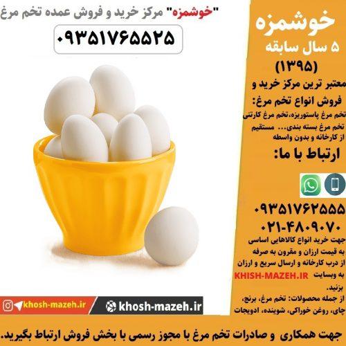 خرید تخم مرغ ارزان