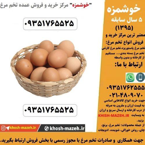 فروش عمده تخم مرغ