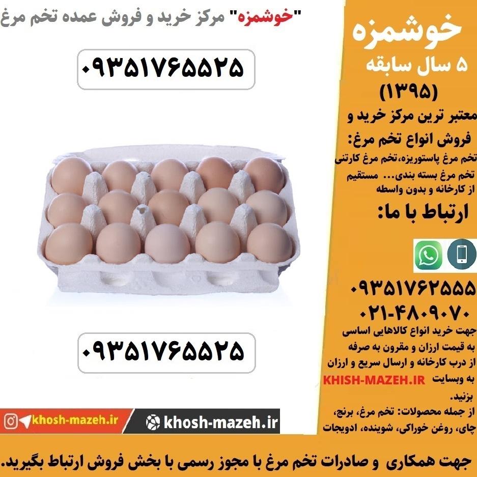 خرید عمده تخم مرغ ارزان