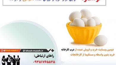 خرید عمده تخم مرغ