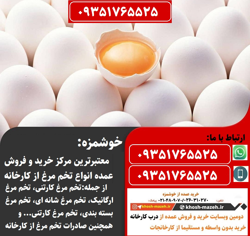 مرکز فروش عمده تخم مرغ