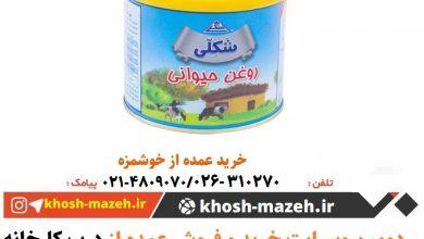 قیمت روز روغن حیوانی