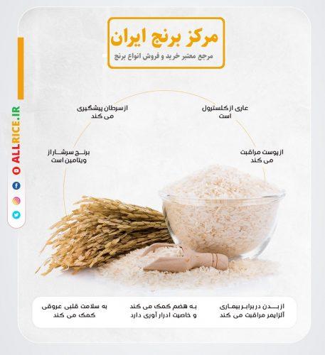 خرید برنج فجر گرگان
